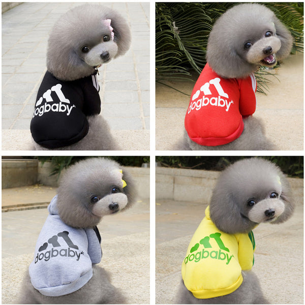 Sportie Hoodie for Small Dogs - NEW