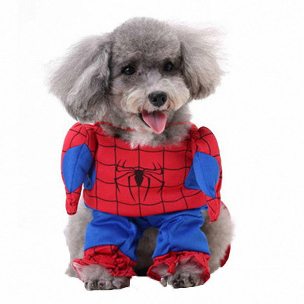 Halloween Costumes for Small Dogs