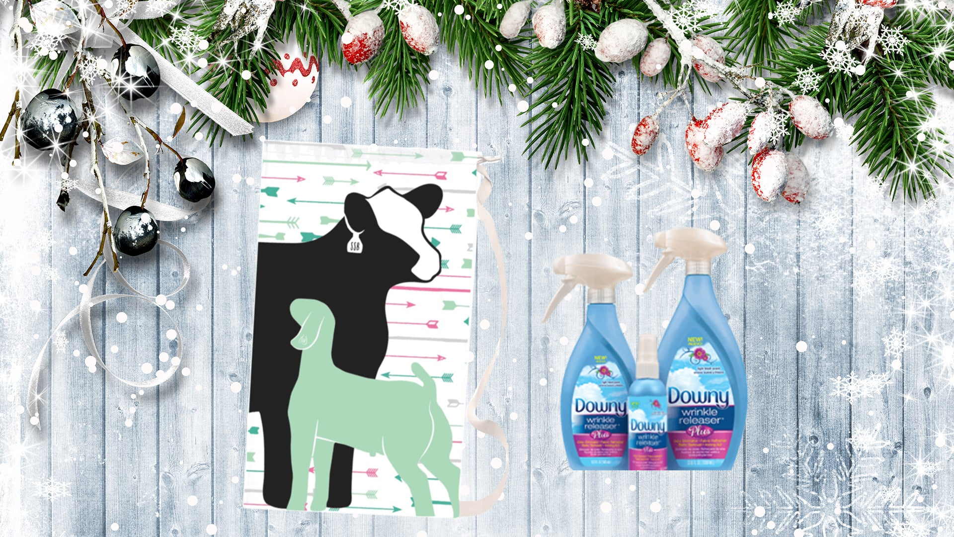THE SHOW FAMILY CHRISTMAS GIFT GUIDE 2018 – Next Level Livestock Camps