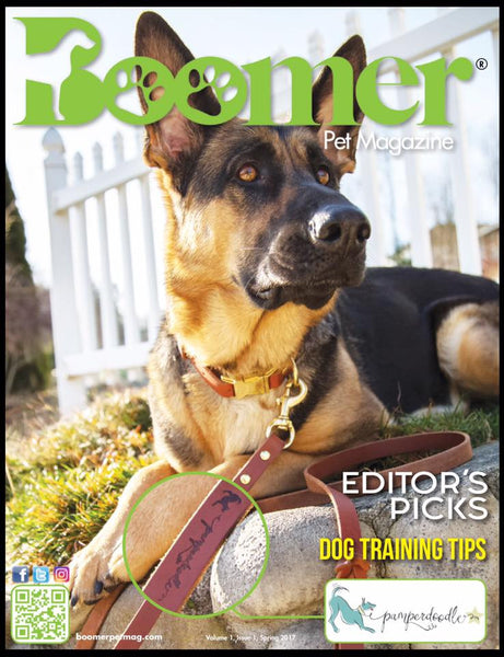 Boomer Pet Mag, Pamperdoodle cover feature, Willa GSD