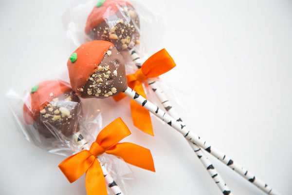 Nutty Pumpkin - Pamperdoodle - Decorated Dog Treat