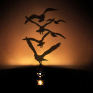 Led Shadow Projector - Flock - Goamiroo Store