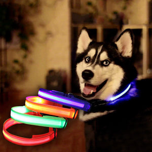 Led Flashing Dog Collar - Goamiroo Store