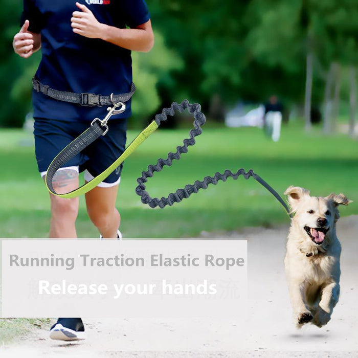 Dog Running Traction Elastic Rope