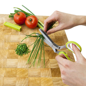 Herb Scissors With Cleaning Comb - Goamiroo Store