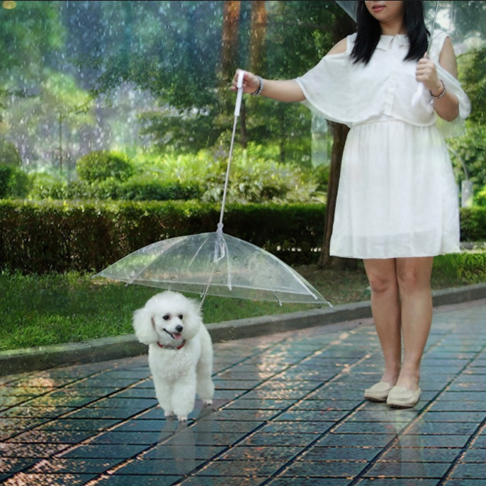 Pet Umbrella with Leash and Handle