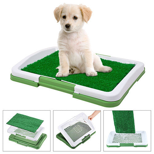Indoor Puppy Potty Trainer