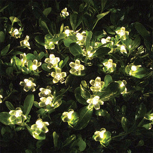 50 LED Solar Blossom String Lights-GoAmiroo Store