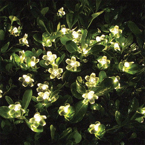 50 LED Solar Blossom String Lights