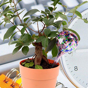 Self Plant Watering Device - Goamiroo Store