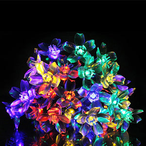50 Led Solar Blossom String Lights - Goamiroo Store