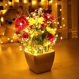 120 LED Fairy Starry Copper Outdoor Wire Rope Lights Solar Powered String Light-GoAmiroo Store