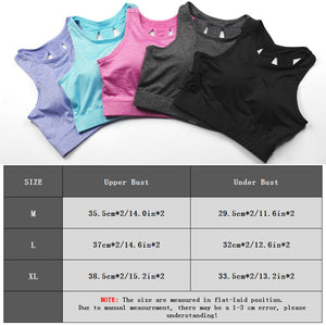 Women Sports Bra Shockproof Running Yoga Bras Cropped Tops - Goamiroo Store