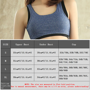 Hollow Out Padded Sport Bra Women Shockproof Yoga Bras Sport Tops - Goamiroo Store