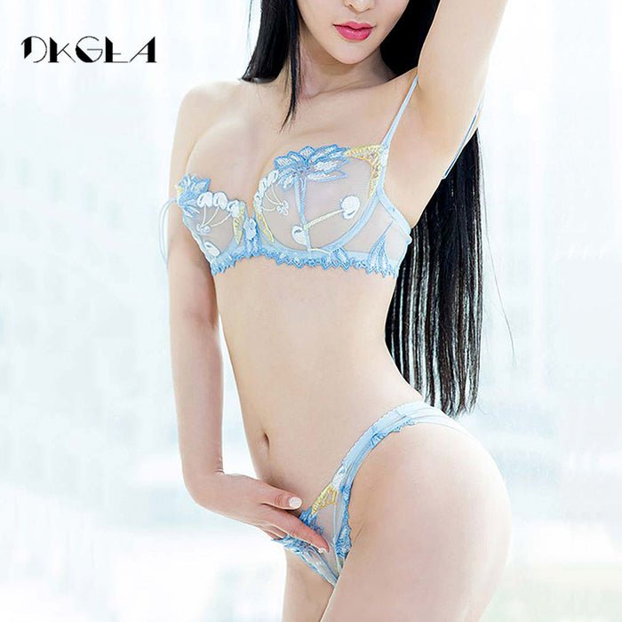 2017 Fashion Flowers Embroidery Lingerie Set Lace Blue Transparent Underwear Set Women Sexy Hollow out See Through Bra Pink