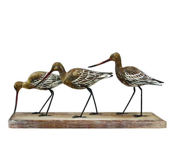 Godwits On Wooden Log