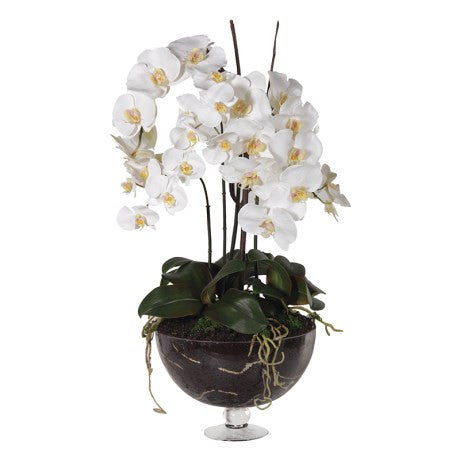 Large white orchid - Unique Gifts & Interiors