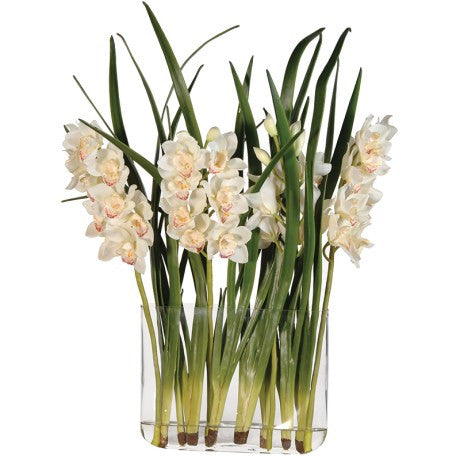 Large Cream Orchid Arrangement - Unique Gifts & Interiors