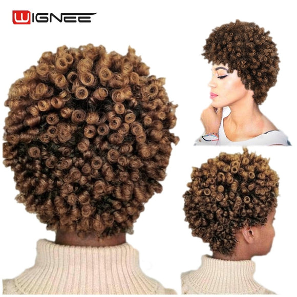 Hair Extensions - Synthetic Mixed Brown Curly Short Hairstyle Wigs