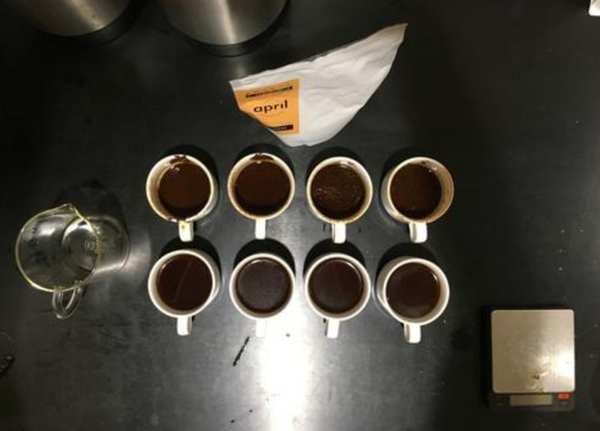 "A blog post from Barista Hustle about our ""Superlatives Coffee"""