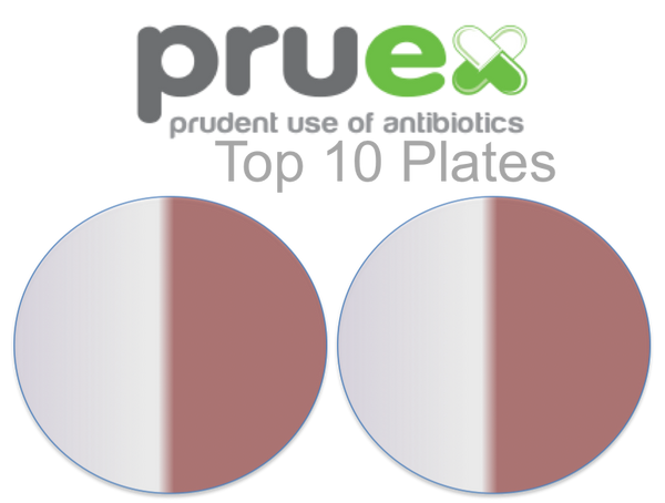 1.1 Top Ten Plates (10 cows)