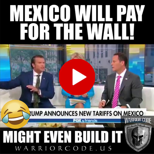 Mexico will pay for the wall, might even build it!