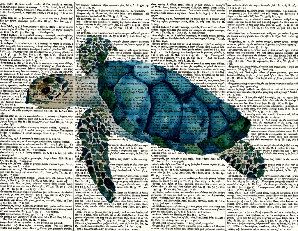 Dictionary Sea Turtle