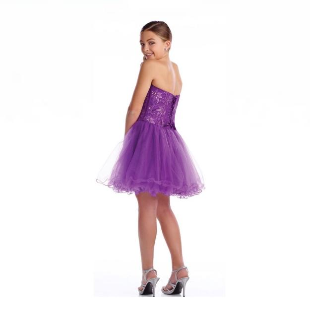 Lexie Purple Tulle Dress