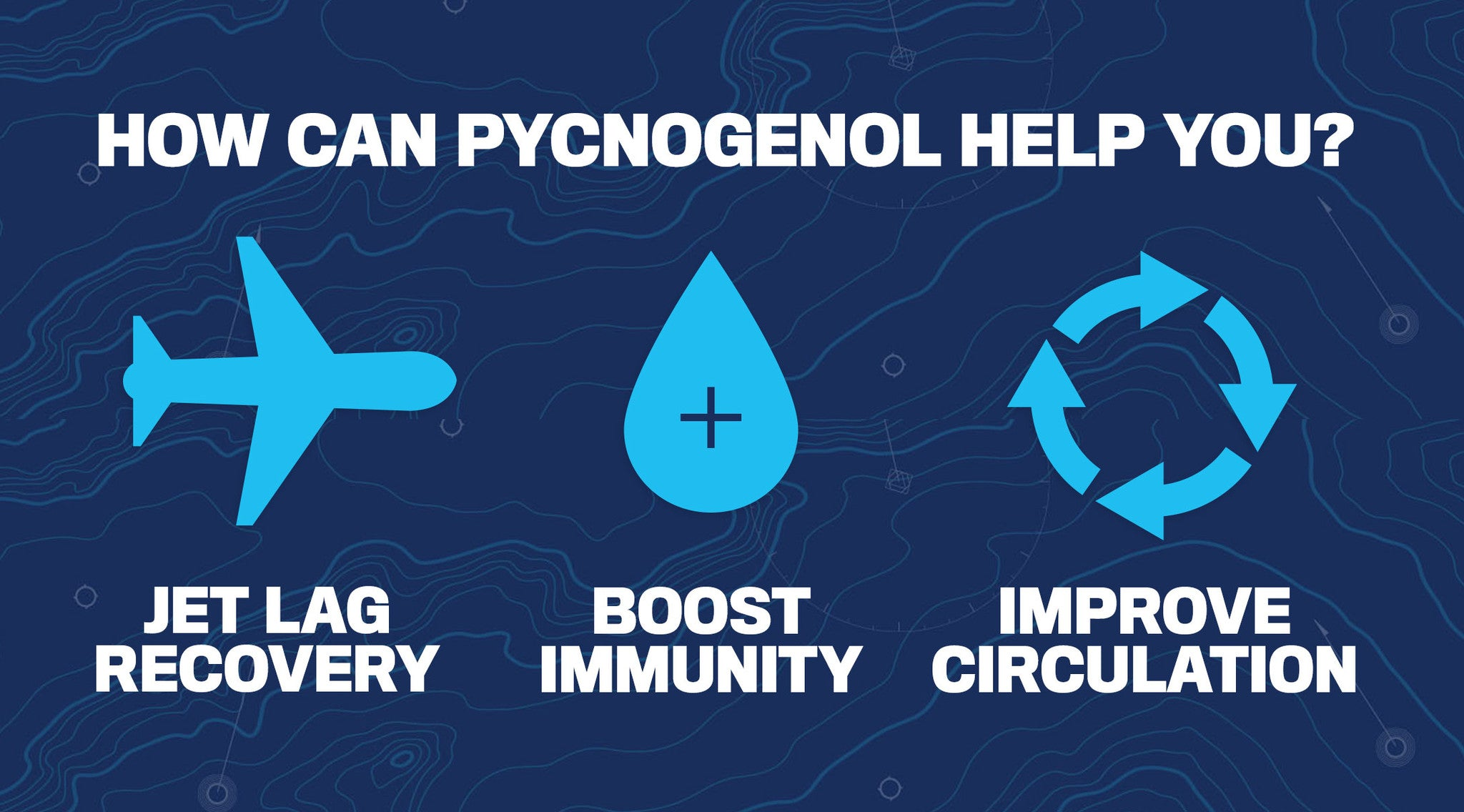 KEY THINGS TO KNOW ABOUT PYCNOGENOL