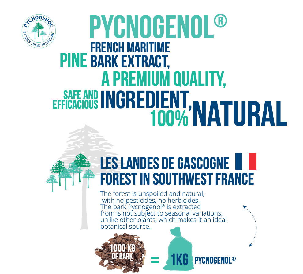 Pycnogenol French Maritime Pine Bark Extract