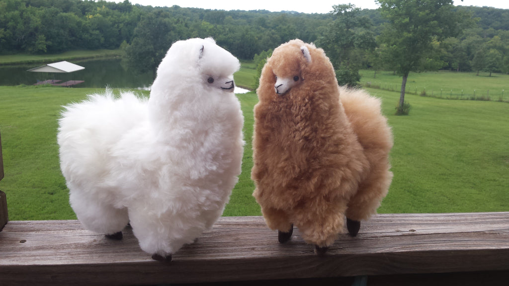 Plush Alpaca-Amazingly soft and luxurious! Huge seller!