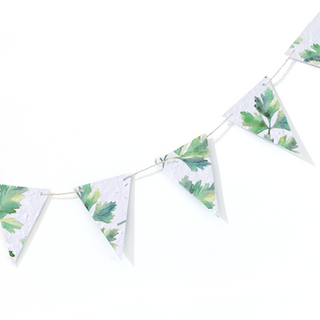 Parsley | Banner (11 pieces)