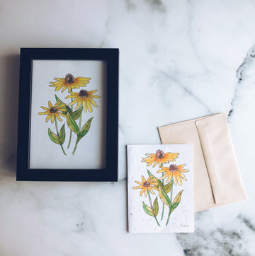 Rudbeckia Duo | Bundle