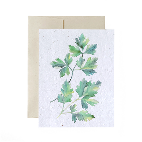 Parsley | Card