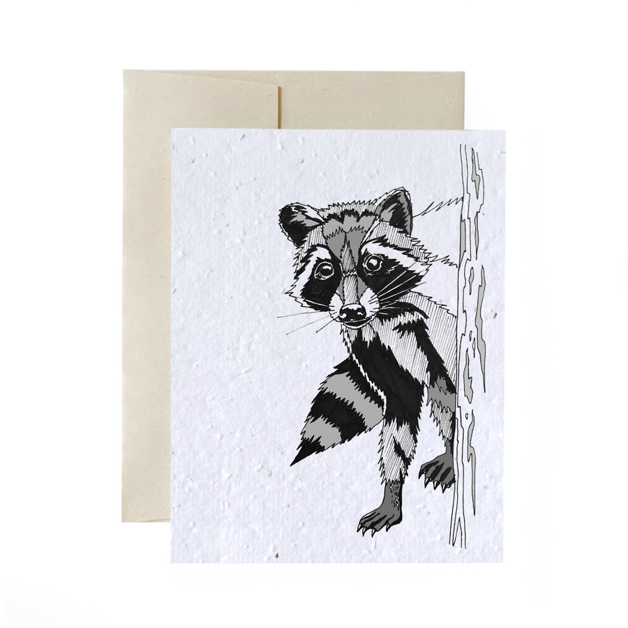 Raccoon | Card