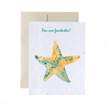 Starfish | Card