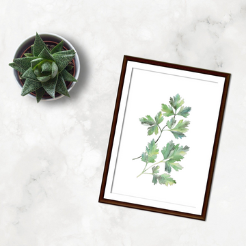 Parsley | Poster
