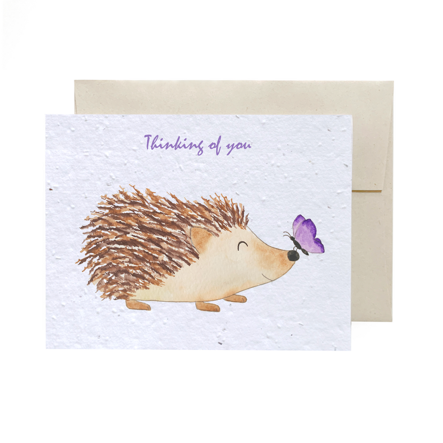 Hedgehog | Card