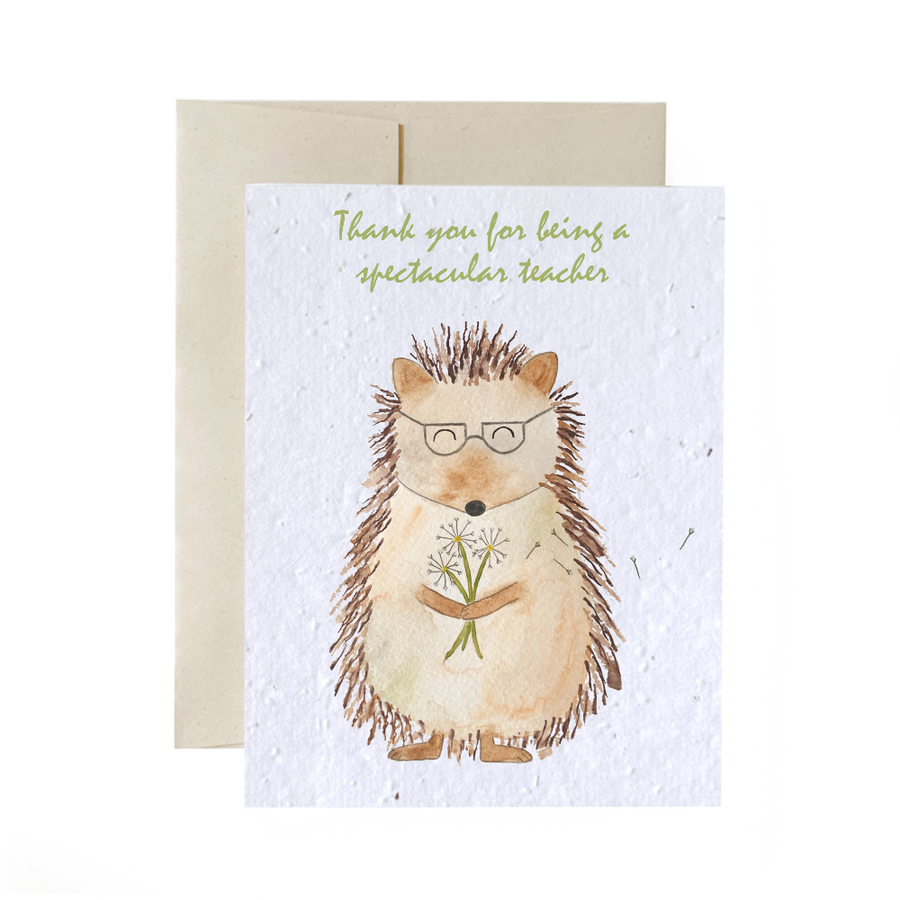 Hedgehog Student | Card