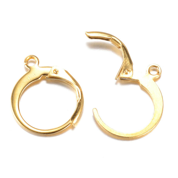 Stainless Steel Leverback Earring