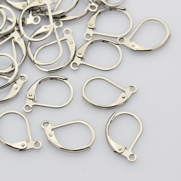 Lever Back Earring Stainless Steel