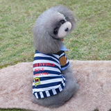 Striped Dogs T-Shirt - Pets Club