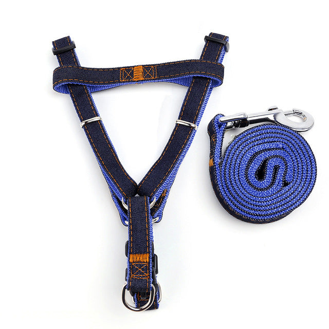 Jean Traction Dog Leash and Harness - Pets Club