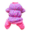 Lovely Colorful Design Dogs Jacket - Pets Club