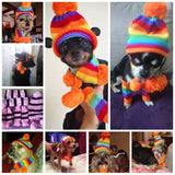 Winter Accessories For Dogs - Pets Club