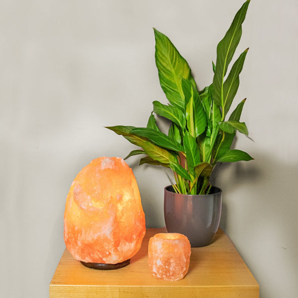 1kg Himalayan Salt T-Light