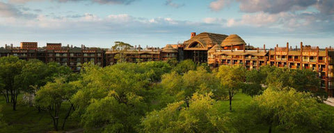 Disney's Animal Kingdom Vacations
