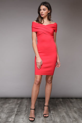 Flamingo Love dress in coral - Downtown Chic Online