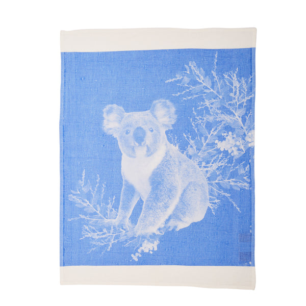 Koala Light Blue