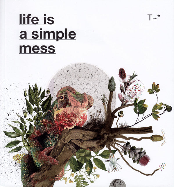 Travassos ‎– Life Is A Simple Mess